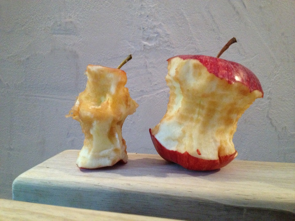 garbage-disposals-cant-handle-apple-cores