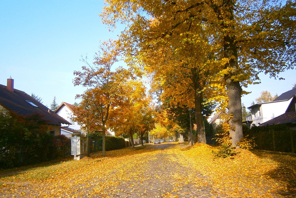 tips-to-prepare-your-home-for-the-fall-season