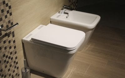 The History and Evolution of Toilets