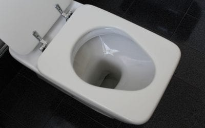 Two Big Reasons to Switch to a Low-Flow or Dual-Flush Toilet