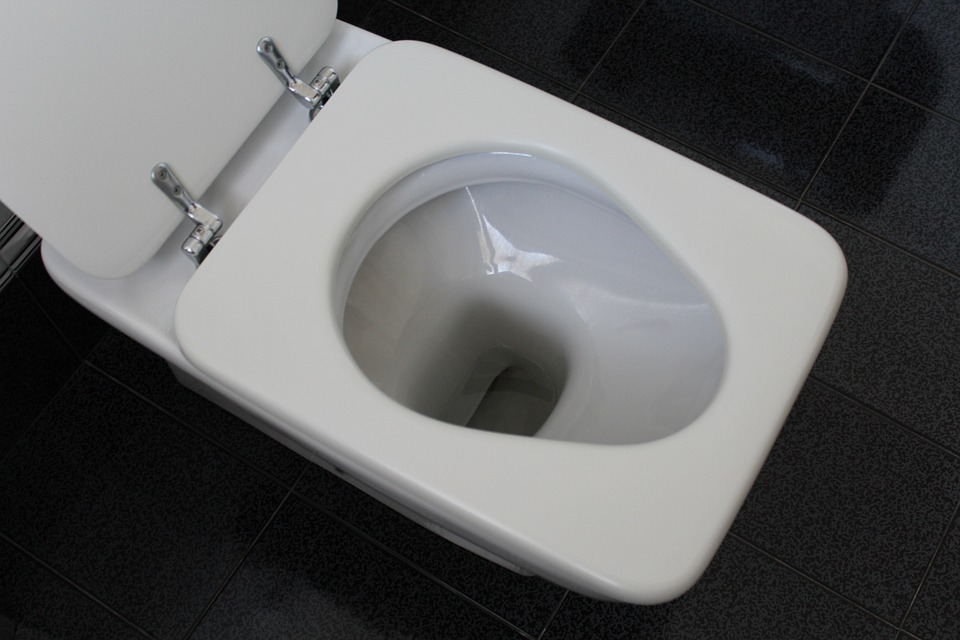 Low-Flow or Dual-Flush Toilet